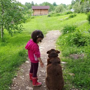 Девочка на прогулке с Полканом